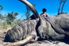 elephant-hunting-ekuja-hunting-safaris-6
