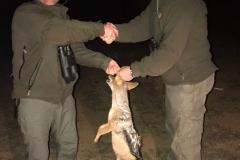 african-hunting-small-mammals-ekuja-hunting-safaris-1