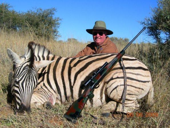 plains game hunting in namibia zebra